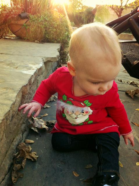 Thanksgiving Meg S Milieu