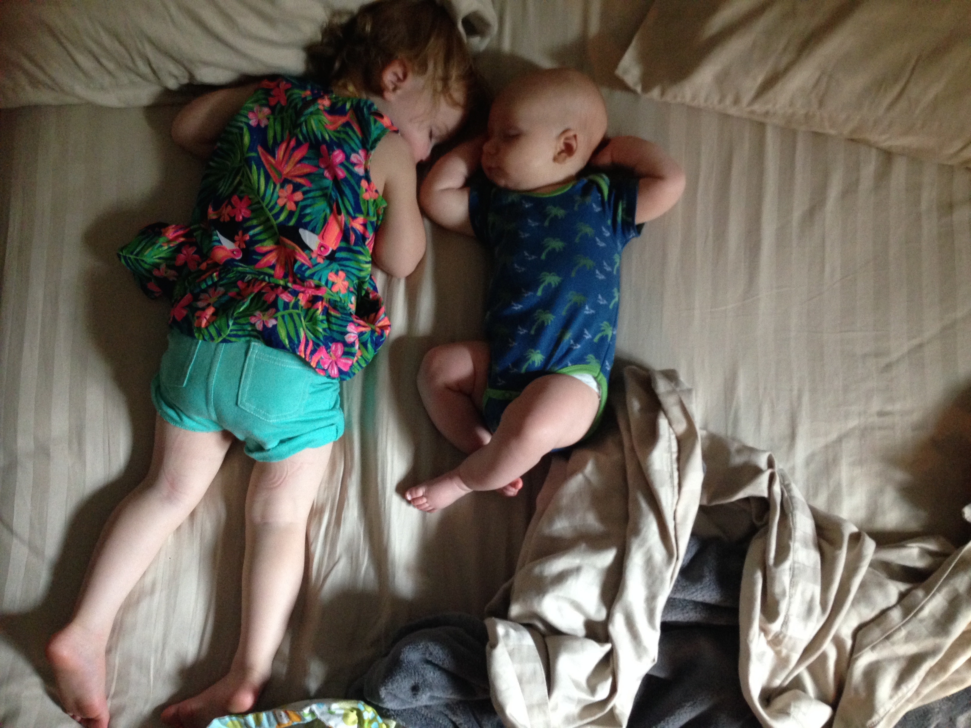 July 2014 - Post Dallas Zoo Naps